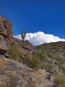 Peralta Trail Steep Climb