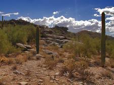 Peralta Trail Views
