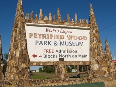 Petrified  Wood  Park