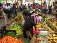 Mercado de Pettah