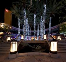 Phoenix City Night View
