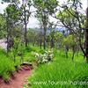 Phu Wiang Parque Nacional