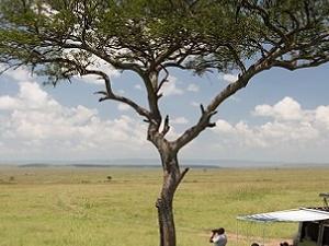 Maasai Mara 4 Days Safari Photos