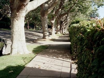 Piedmont  C A Street