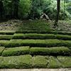 Piedras Negras Ruins At Petén Department - Guatemala