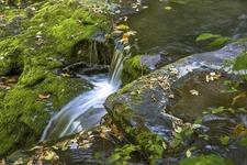 Pike County - Dingmans Falls - Pennsylvania