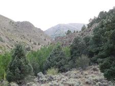 Pine Creek Canyon Trail