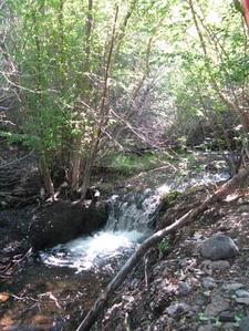 Pine Creek Touquima Range