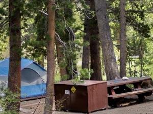 Pinegrove Campground