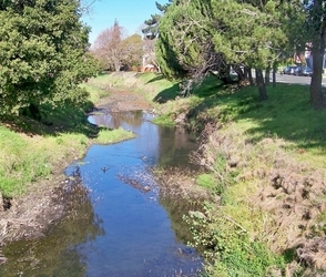 Pinole Creek