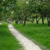 Biking Track