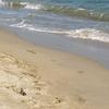 Playa del Bogatell