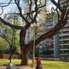 Plaza Vicente López Y Planes