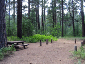 Plumas Greenville Campground