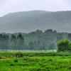 Pochuck Montaña