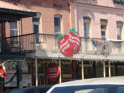 Ponchatoula During The Strawberry Festival