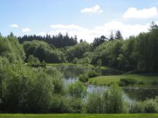 Pond At RBP Hillsboro OR