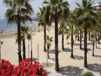 Ponent Beach