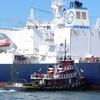 Portland Harbor ME Casco Bay - Tugboat