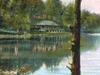 Postcard Lake Mohegan Park Norwich C T 1 9 0 9