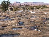 Pothole Point Trail