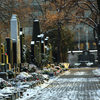 Cementerio de Olšany
