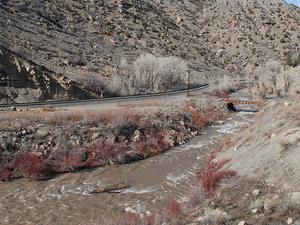 River Precio