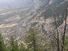 Pryor Mountain Terrain