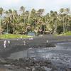 Punaluu Black Sand Beach Park In Big Island (Hawaii)