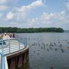 Pymatuning Reservoir