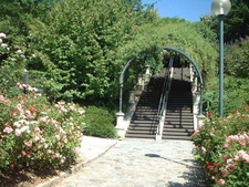 The Parc De Belleville