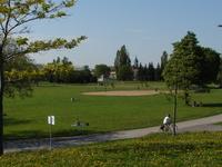 Jarry Park