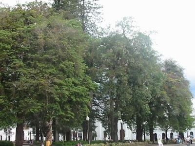 Caldas Park