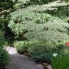 Elk Rock Gardens Of The Bishop's Close