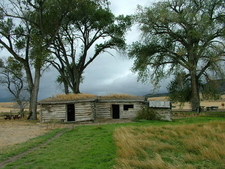 Parker Homestead With Cottonwoods