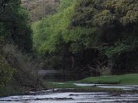 Oti River
