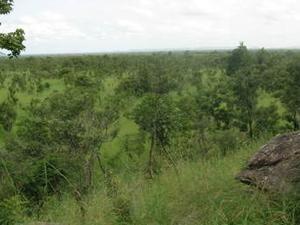 Pendjari Parque Nacional