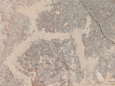 Petroglyph A Llama