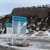 Pino Hachado Pass