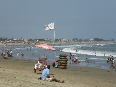 Southern View Of The Beach