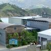 Portobello Aquarium