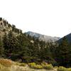 Greyrock Mountain Trail