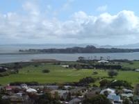 Puketutu Island