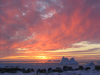 Qeqertarsuaq Greenland