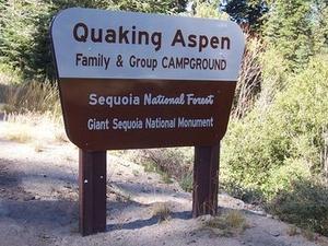 Sequoia Quaking Aspen Campground
