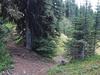 Quartz Lakes Loop Trail - Glacier - Montana - USA