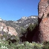 Quinn Canyon Wilderness Area