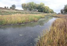 Rabbit River Bois De Sioux Minnesota