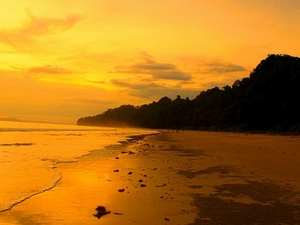 Disfrute Andaman Islands Treasure Trove