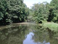 Rahway Río
